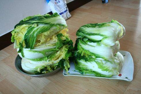 Home Cooking Recipe: After 15 hours of salting in the salt water, the cabbage is not hard. After washing in the clear water, control the water...