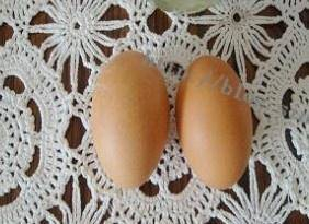 Home Cooking Recipe: Eggs are taken out of the refrigerator and placed at room temperature for warming up