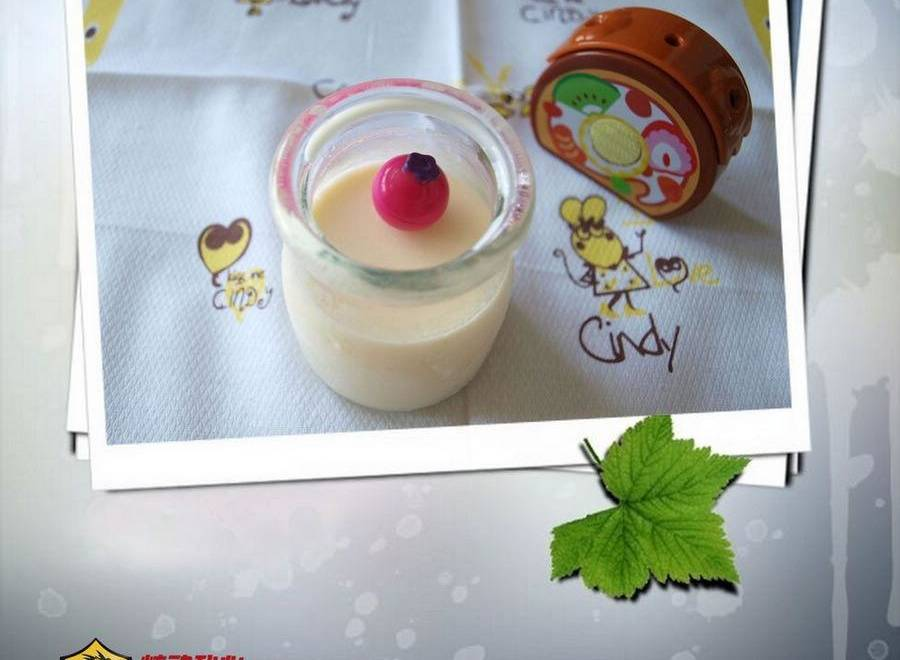 Home Cooking Recipe: Fresh milk pudding
