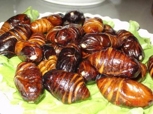 Home Cooking Recipe: Fried cocoon