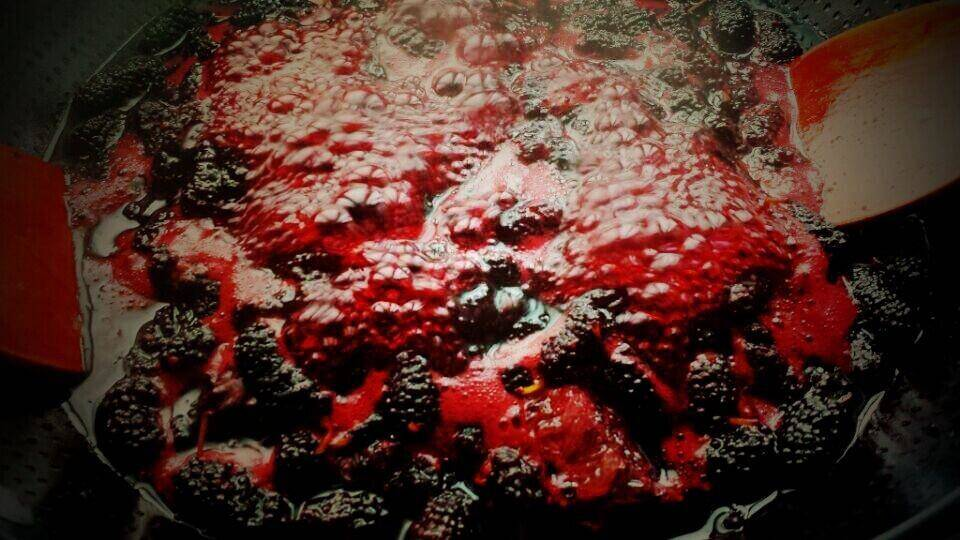 Home Cooking Recipe: [Full vegetarian] seasonal jam, mulberry sauce