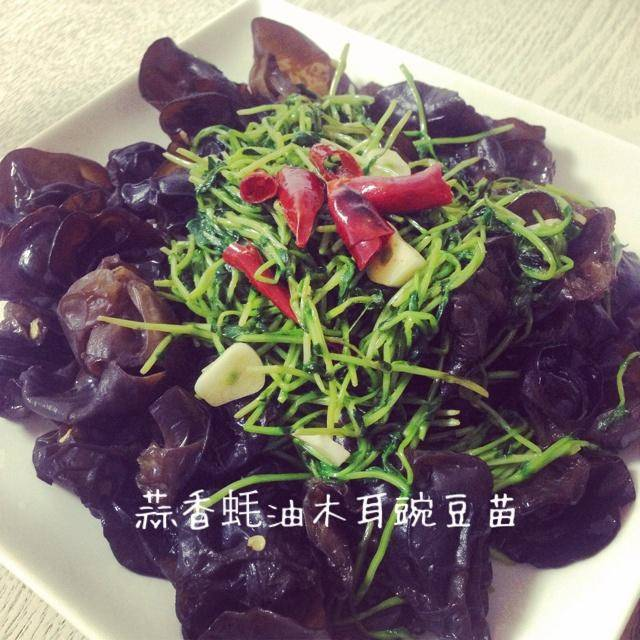 Home Cooking Recipe: Garlic oyster sauce, fungus, pea sprouts