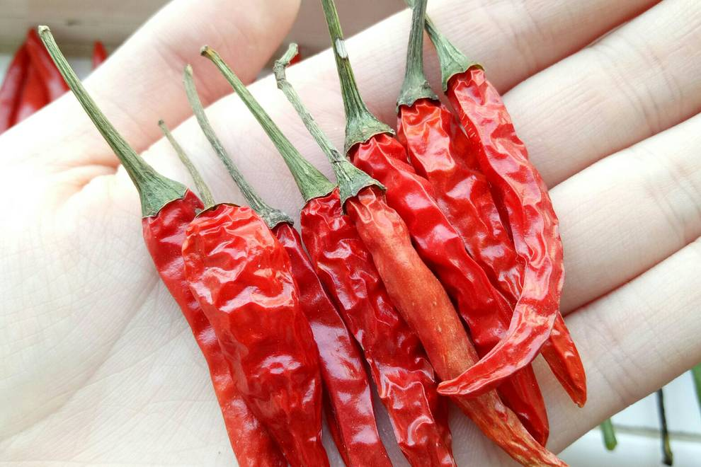 Home Cooking Recipe: Homemade super spicy dried chili