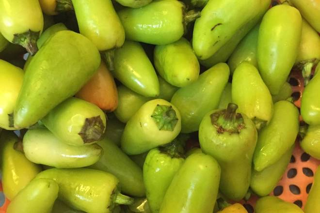 Home Cooking Recipe: Prepare small green peppers, wash, dry naturally, not water and oil